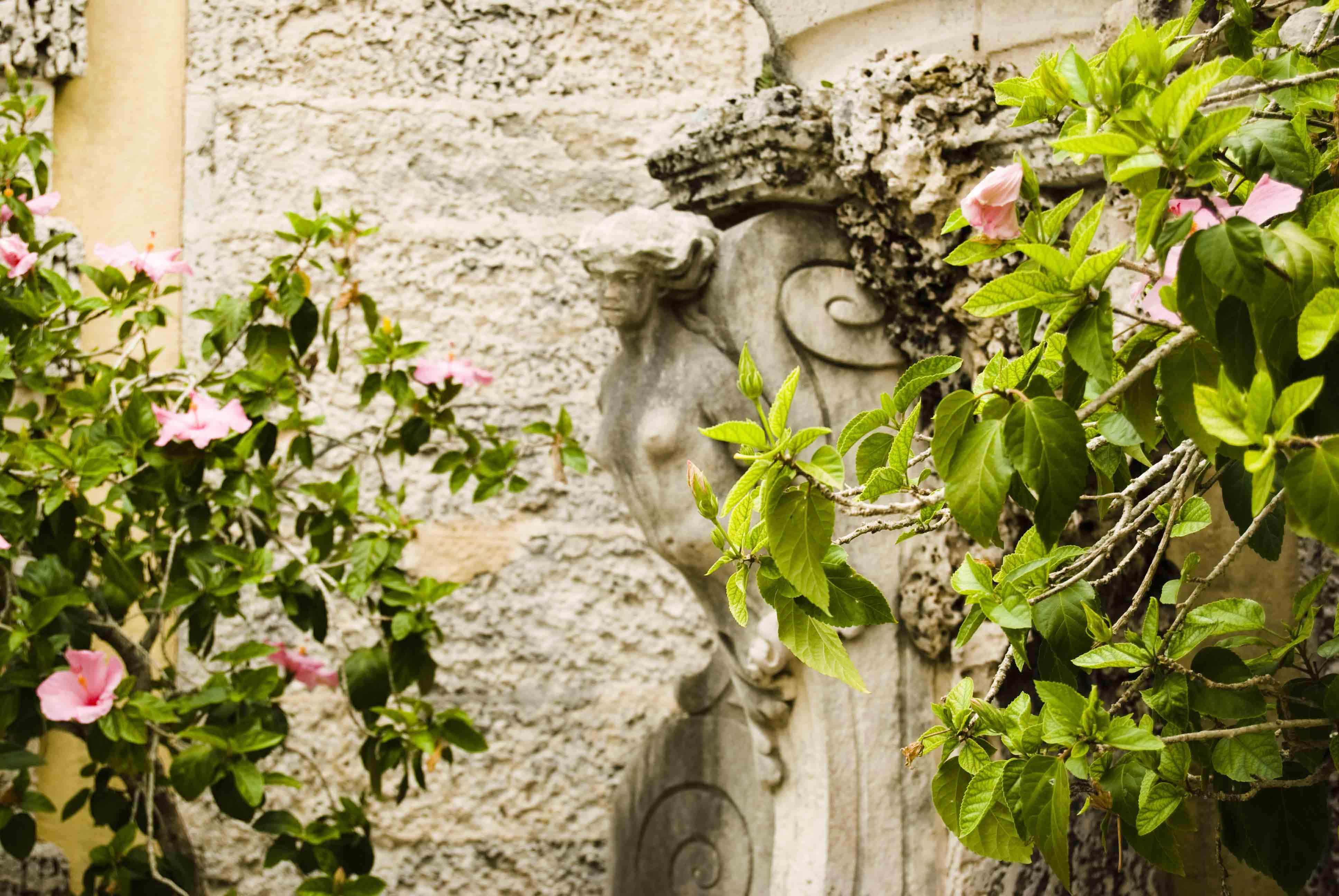 Secret Garden: Morningjoy's Weblog